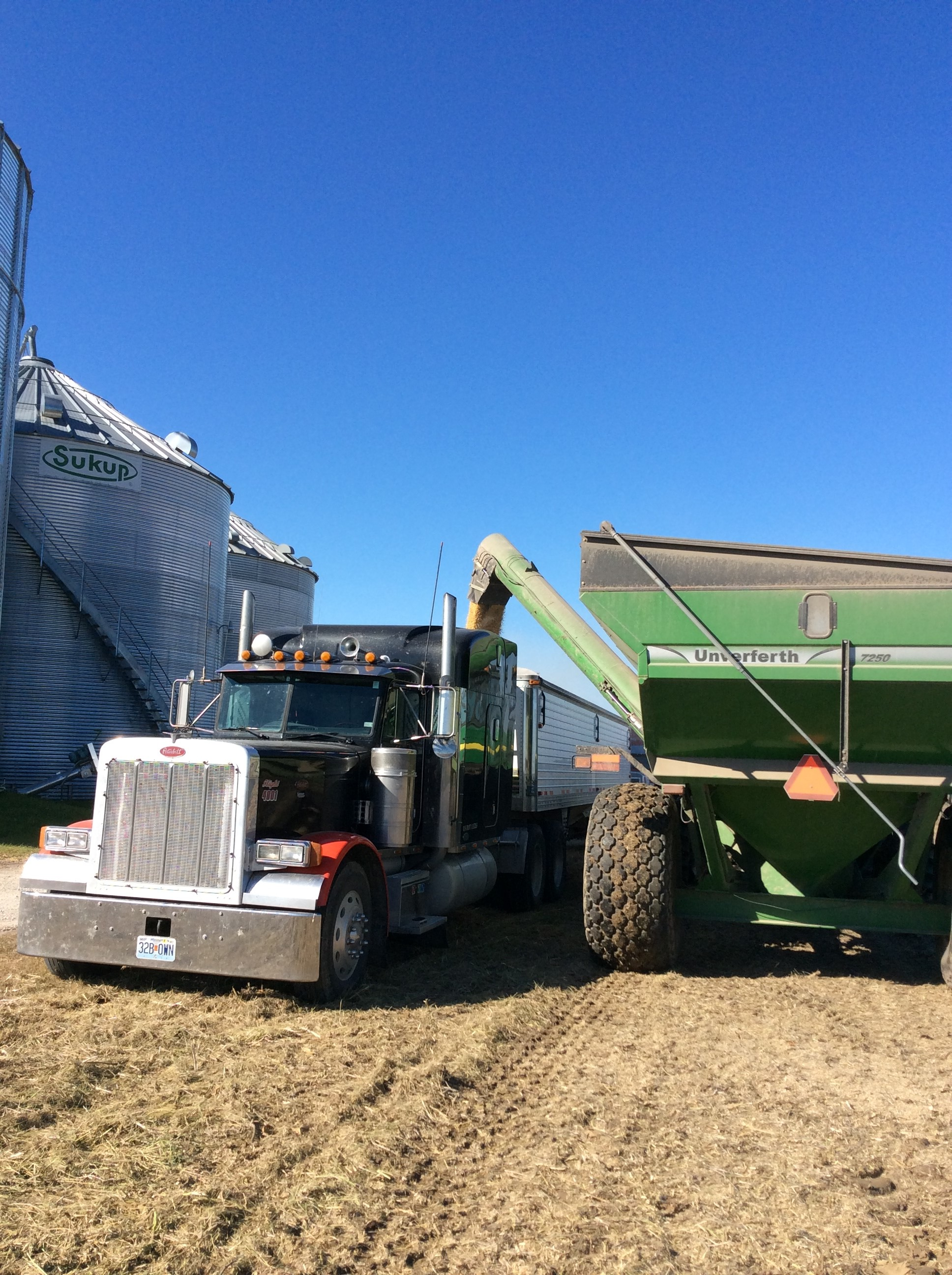 Holding Power – Insights on Storing a Bumper Crop | Missouri