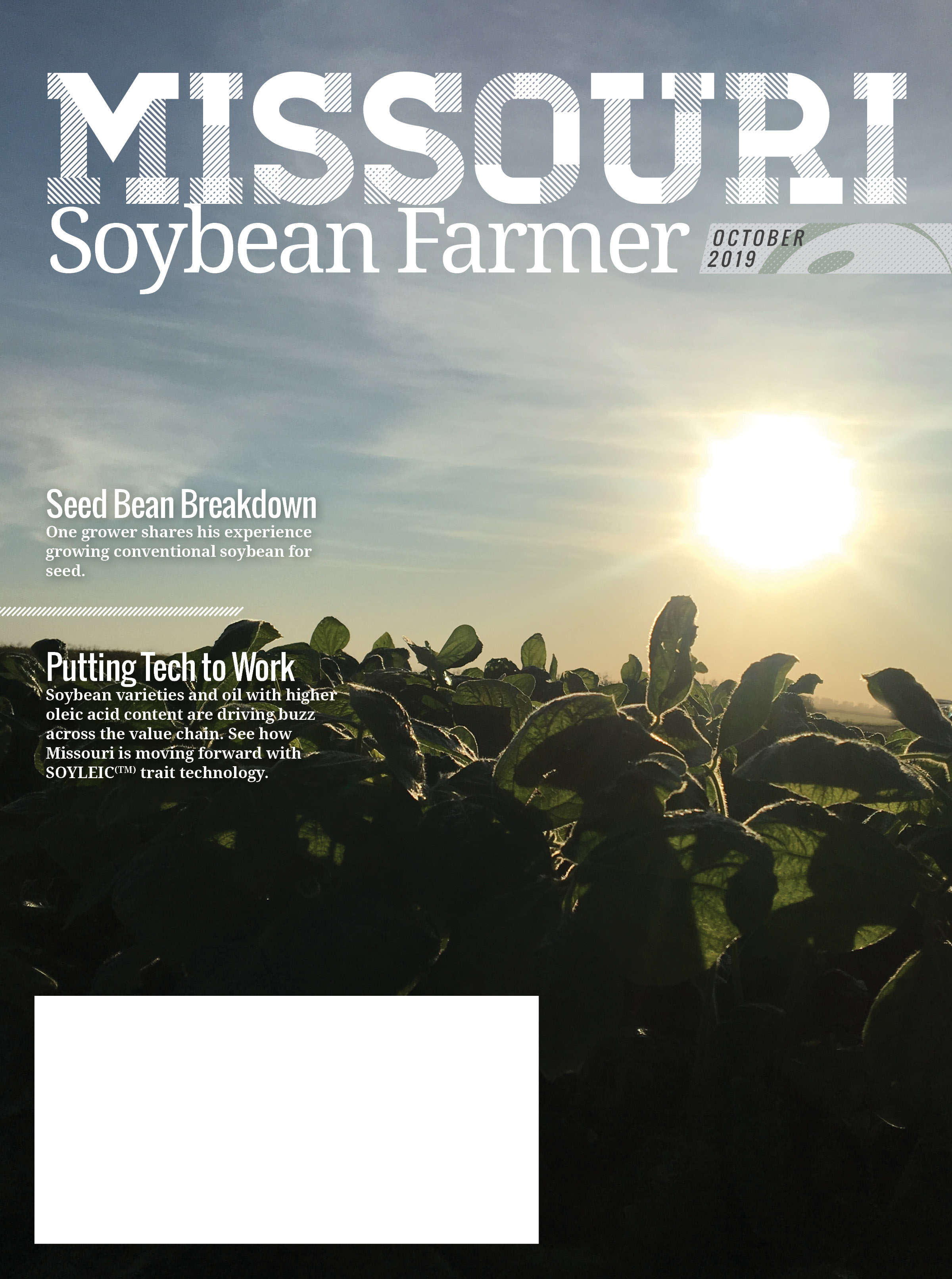 Missouri Soybean Farmer Magazine – October Issue Available Now